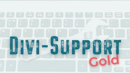 Divi-Support Gold